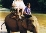 Op een olifant in Thailand
