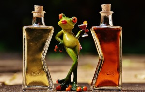 frogs_free_pixabay